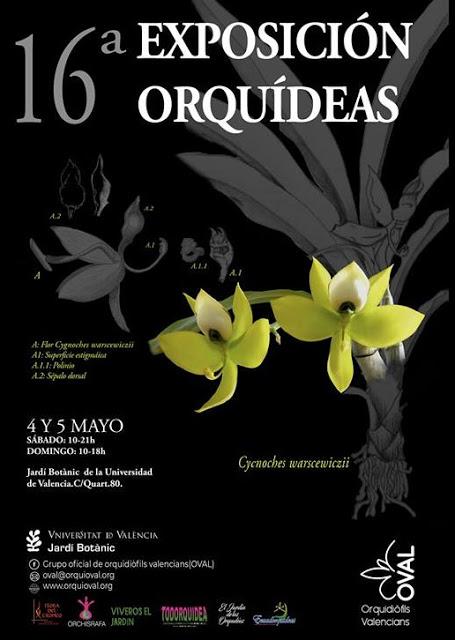 16ª Exposición de Orquídeas otoño 2019