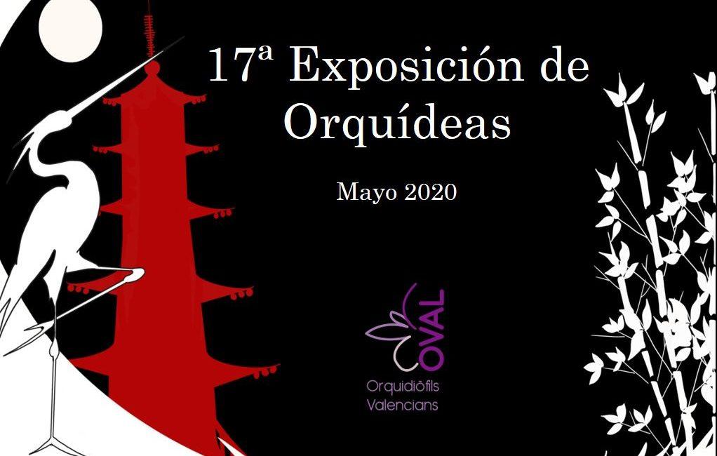 17 Exposición de Orquídeas. Orquioval.