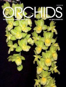 Portada de la revista American Orchid Society de agosto de 2019