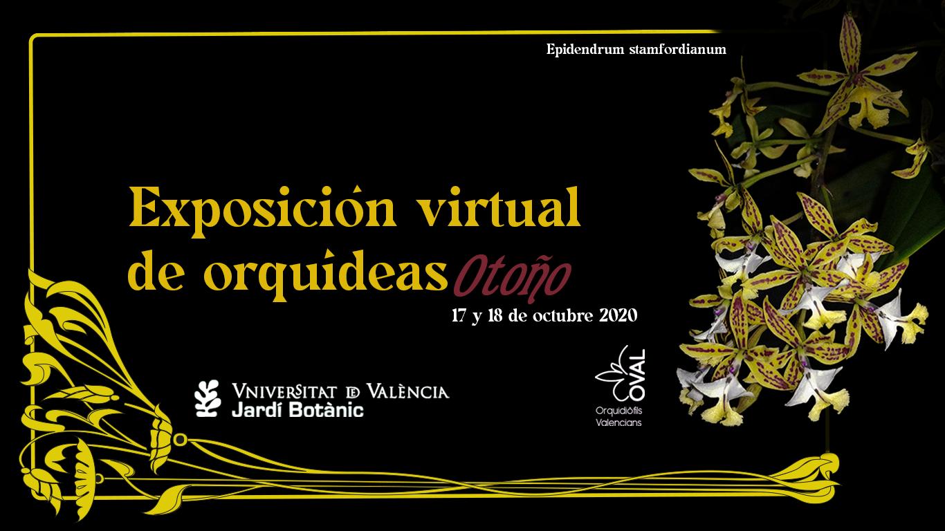 Cartel exposición virtual OVAL 2020